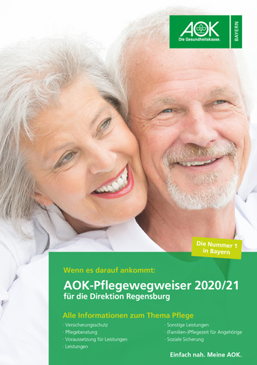 pflegewegweiser regensburg 2020